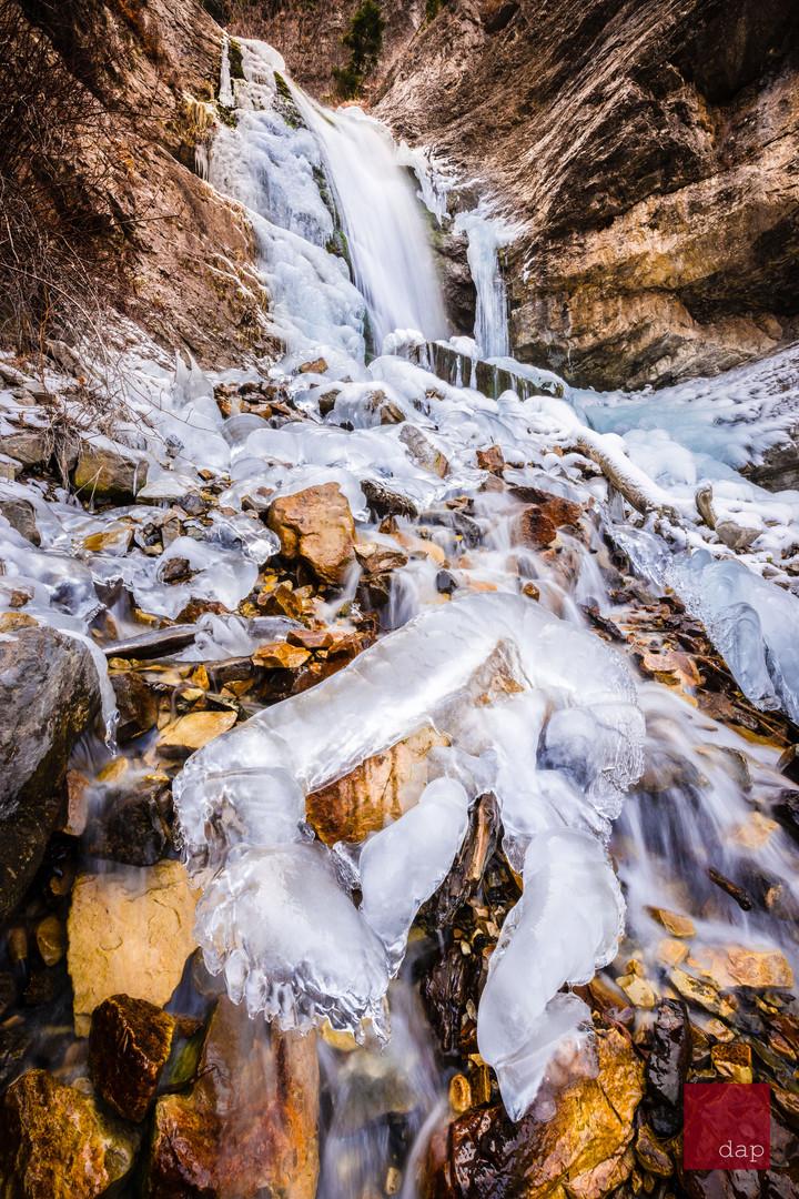 North Falls 81