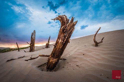 Sand 063