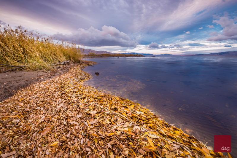 Sandy Beach 14 049