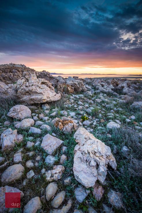 Antelope Island 1 070.jpg