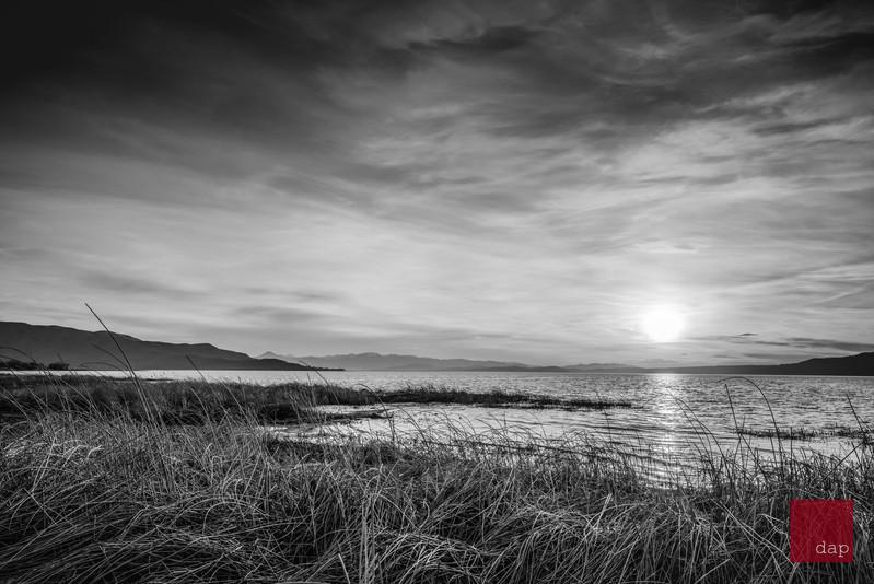 Sandy Beach 88 bw