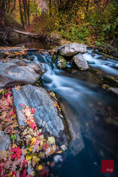 Hobble Creek 41
