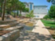 Technion & TEC Tsion