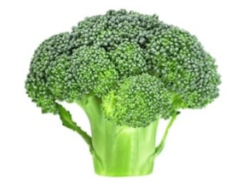 ONTARIO Broccoli