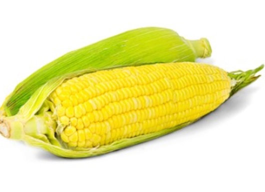 ONTARIO Corn- Sold by the each