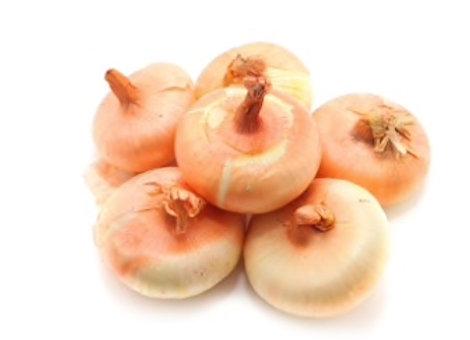 ONTARIO Cipollini Onions- 1 QT