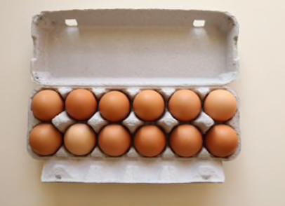 Egg Share (18 Weeks)