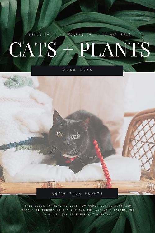 Cats + Plants