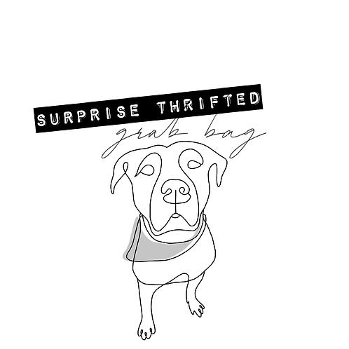 Surprise Grab Bag