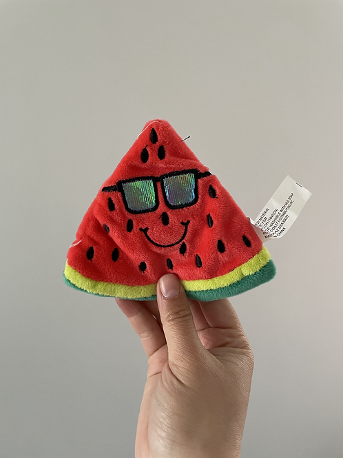 Watermelon Crinkle Toy