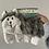 Thumbnail: No-Stuffing Dog