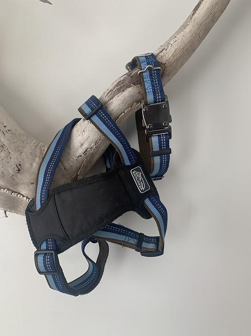K9 Explorer Harness and Collar - MEDIUM
