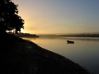 The estuary at dawn