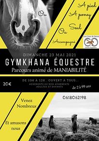 gymkhana.png
