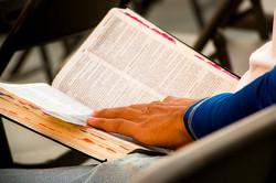 BIBLIA CAUCEL WEB