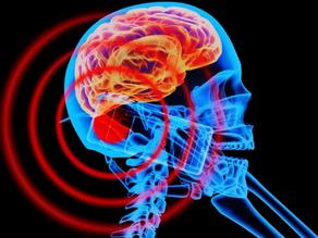 Сотовый телефон: польза и вред. Влияние мобильной связи на здоровье и мозг взрослого человека и дете