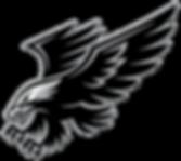Hawk1.png