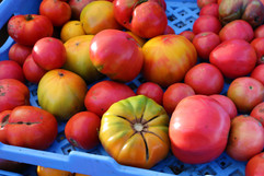 heirloom tomato at the market