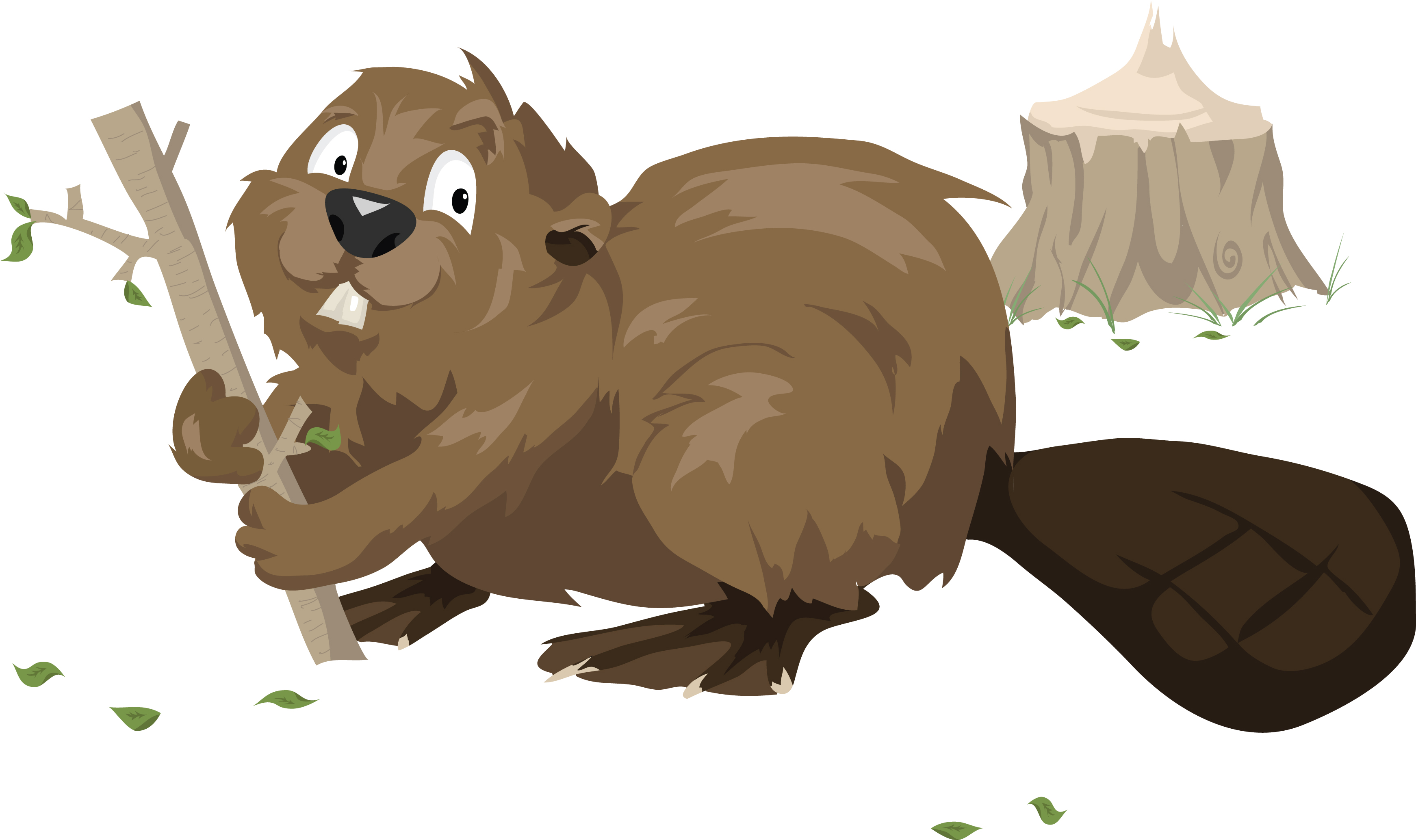 West Coast Critters Cartoon