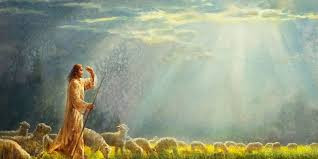 Mensagem da Presidente - Seguir com Jesus!