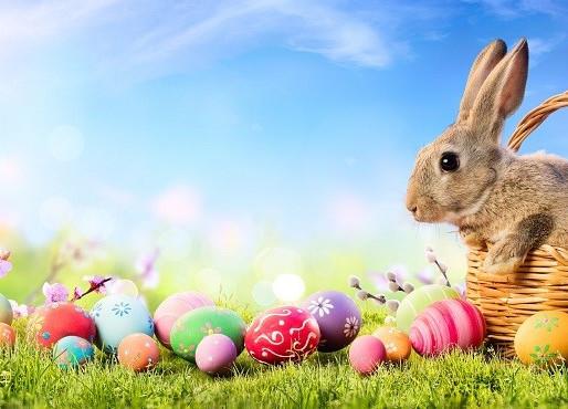 Desejamos a todos uma Feliz e abençoada Páscoa.