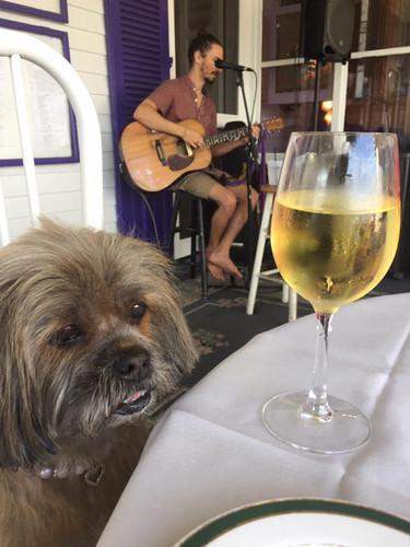 Dog Friendly Porch