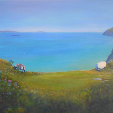 Achill Sheep, Mayo coast landscape painting