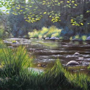 Vltava August, Beaver