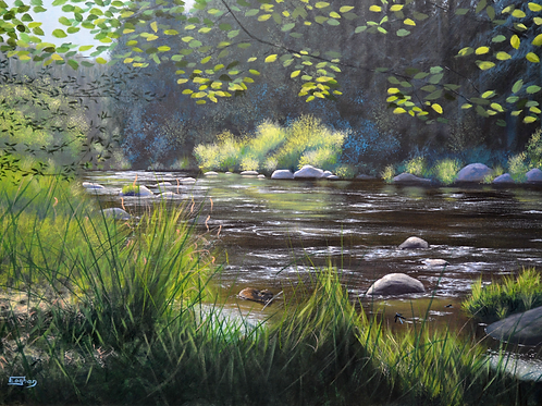 Giclee print of Vltava August, Beaver and Damsel Flies.