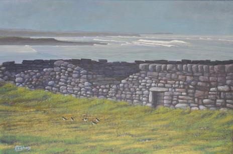 Streedagh Looking West, Sligo coast painting