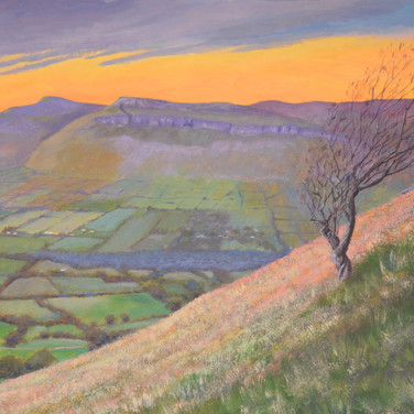 Mountain tree, Sligo landscape painting
