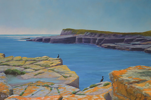 SOLD - Inishmurray Cormorants