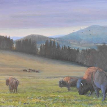 Bison, Czech landscape painting