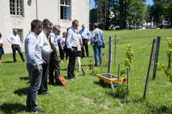 Vitirover demo directly in a Chateau