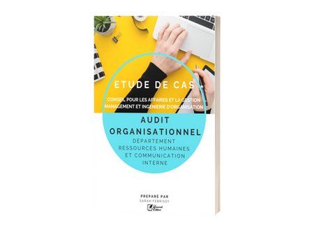 Etude de Cas : Audit Organisationnel