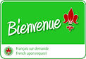 Services de sessions de Reiki en français