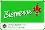Classes de Reiki à Regina SK offerts en français