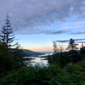 #0024: A Midsummer Night's Dream