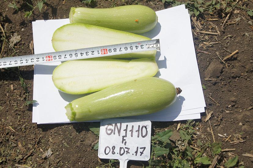 Кабачок GN 1110 F1 (500 семян)
