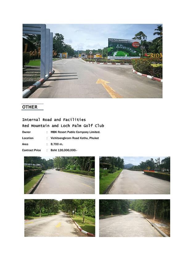 Internal Road and Facilities-1.png