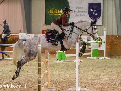 HPP Leszno, ponad 200 koni!