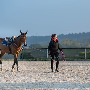 Cracovia Szary Equestrian Show Michałowice 2nd week