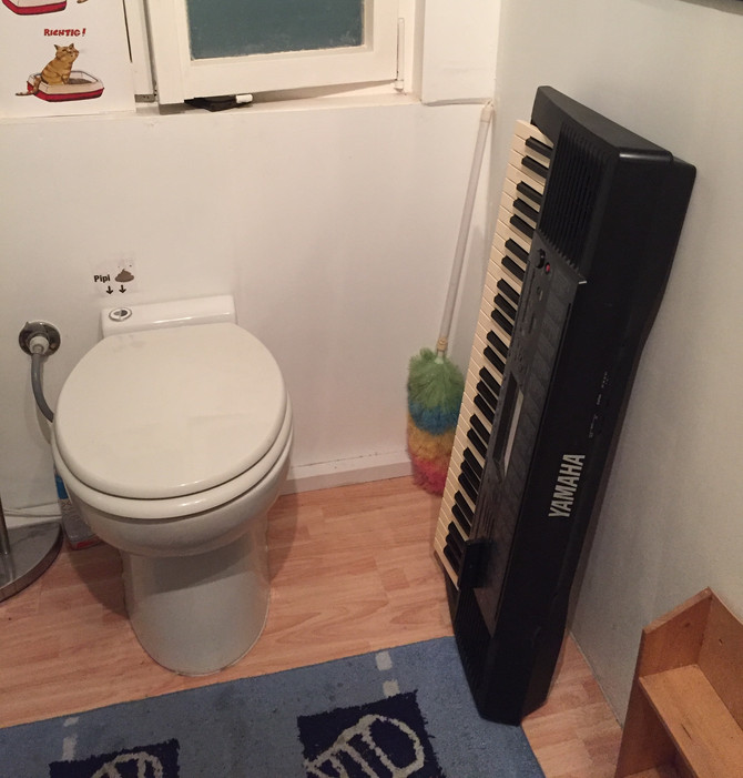 Keyboard In the Toilet