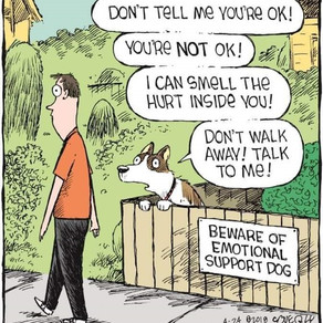 Therapy Humour