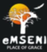 emseni_logo - larger.jpg