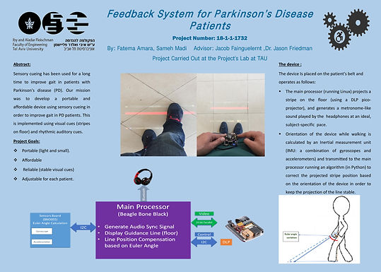 Feedback System for Parkinson's Disease Patients