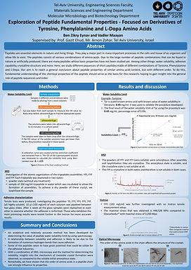 Exploration of Peptide Fundamental Properties