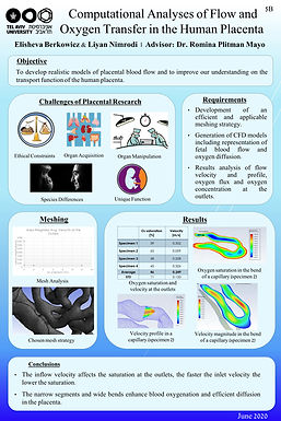 Analyses of Placenta