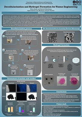 Decellularization and Hydrogel Formation for Tissue Engineering