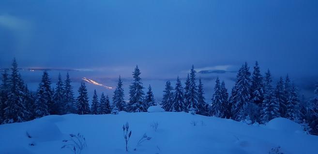 Utsikt vinter